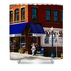 G Willikers Toy Shoppe Shower Curtain by David Lee Thompson