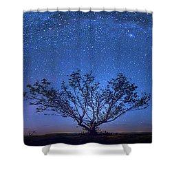 Galatika Shower Curtain