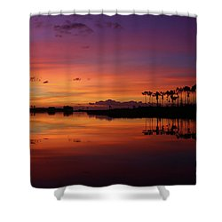 Gale Creek Shower Curtain