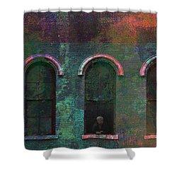 Galesburg Windows 1 Shower Curtain