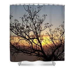 Shower Curtain featuring the photograph Galilee Sunset by PJ Boylan