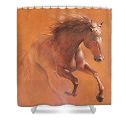 Gallop In The Desert Shower Curtain