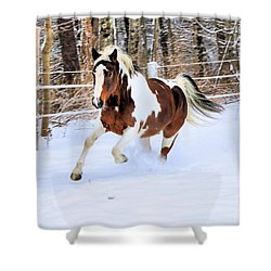 Galloping In The Snow Shower Curtain by Elizabeth Dow
