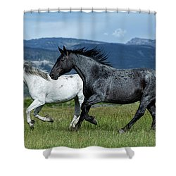 Galloping Through The Scenery In Wyoming Shower Curtain