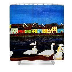Galway Swans Shower Curtain
