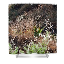 Garden Contre Jour Shower Curtain