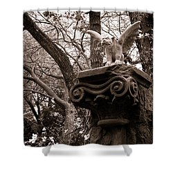 Shower Curtain featuring the photograph Garden Gargoyle  by Toni Hopper