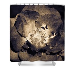 Shower Curtain featuring the photograph Garden Goodbye by Cathy Donohoue