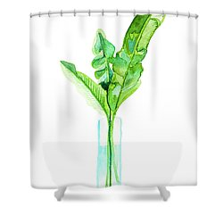 Garden Indoors Shower Curtain by Roleen Senic