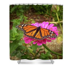 Garden Jewel  Shower Curtain