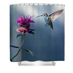 Shower Curtain featuring the photograph Garden Jewelry by Everet Regal