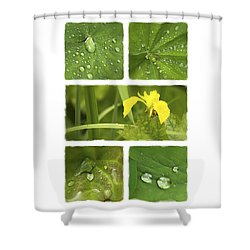 Garden Jewels II Shower Curtain