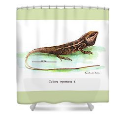 Garden Lizard Shower Curtain