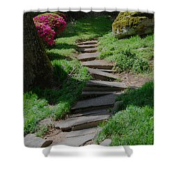Garden Path Shower Curtain by Linda Mesibov