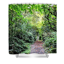 Garden Path Shower Curtain by Tanya Searcy
