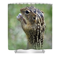 Garden Pest Shower Curtain