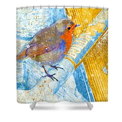 Shower Curtain featuring the photograph Garden Robin by LemonArt Photography