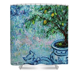 Shower Curtain featuring the painting Garden Sleeping Cat by Xueling Zou