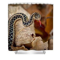 Garden Snake Shower Curtain by Eleanor Abramson
