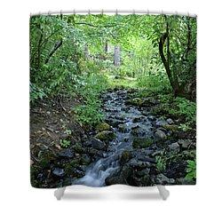 Shower Curtain featuring the photograph Garden Springs Creek In Spokane by Ben Upham III