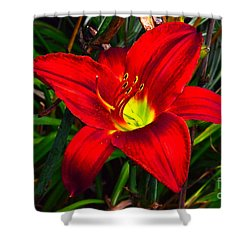 Shower Curtain featuring the photograph Garden Starfish by Jesse Ciazza