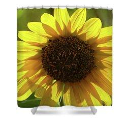 Garden Sunshine Shower Curtain