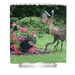 Garden Visitors Shower Curtain by Carol Groenen