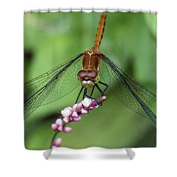 Shower Curtain featuring the photograph Gardener's Friend by Stephen Flint