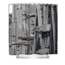 Shower Curtain featuring the photograph Gargoyles North Notre Dame by Christopher Kirby