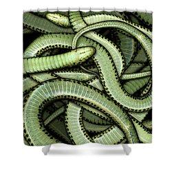 Garter Snakes Pattern Shower Curtain