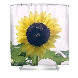Gatherers Shower Curtain