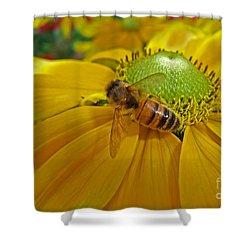 Gathering Nectar Shower Curtain