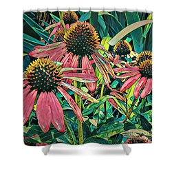 Shower Curtain featuring the photograph Gathering Of Coneflowers by Diane Miller