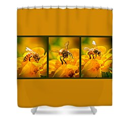 Gathering Pollen Triptych Shower Curtain by Bob Orsillo