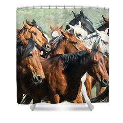 Gathering The Herd Shower Curtain