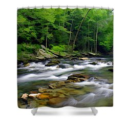 Gatlinburg Stream Shower Curtain