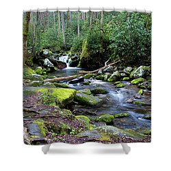 Gatlinburg Water Shower Curtain