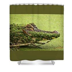 Gator Camo Shower Curtain