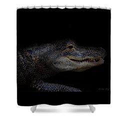 Gator In Black Shower Curtain