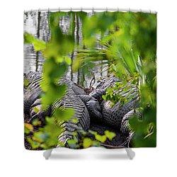 Gator Love Shower Curtain