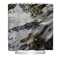 Gator Profile Shower Curtain