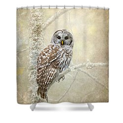 Guardian Of The Woods II Shower Curtain