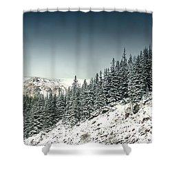 Gaurdians Shower Curtain by Dana DiPasquale