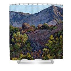 Gaviota Afternoon Shower Curtain
