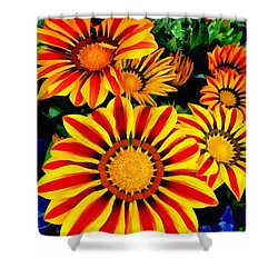 Gazania Splendour Shower Curtain