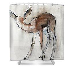 Gazelle Fawn  Arabian Gazelle Shower Curtain by Mark Adlington