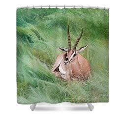 Gazelle In The Grass Shower Curtain by Joshua Martin