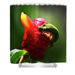 Shower Curtain featuring the photograph Gecko #1 by Anthony Jones