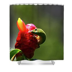 Shower Curtain featuring the photograph Gecko #2 by Anthony Jones