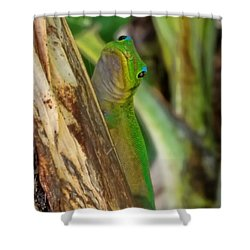 Gecko Up Close Shower Curtain